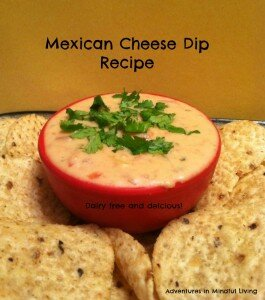 mexican-cheese-dip-recipe